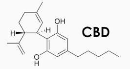 The CBD molecule.