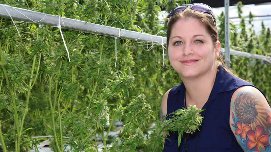 Kristina Risola in a Medical Marijuana Grow Facility