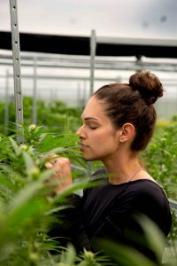 Maura Vega in a Marijuana Grow Facility