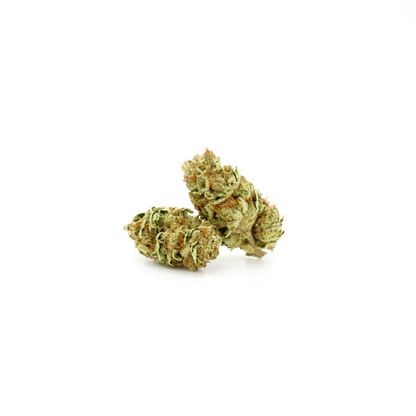 Jack Herer (Hybrid Sativa) - Flower
